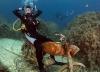 Dykking: Motorsykkel for dykkere