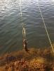 Fisketur eller otertur?