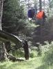 Bjørn som vil ha en ryggsekk