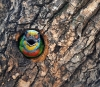 Fargefull fugl i et hull i treet
