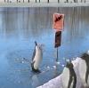 Pingvin som dykker på forbudt sted