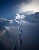 Ensom fjelltur
