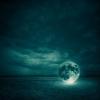 Måne på jorden
