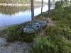 hvalstjern_07062008273