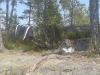 hvalstjern_dsc00962