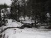 lillomarka_0436