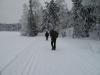 nordmarka_0744