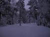 nordmarka_0787