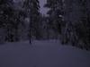 nordmarka_0790