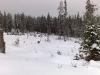 finnskogen090314_01